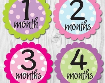 Girl Monthly Stickers, Monthly Baby Stickers, Milestone Stickers, New Baby Gift