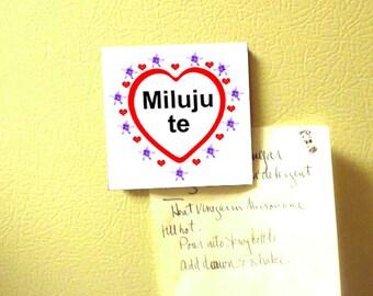 Czech I love you Magnet