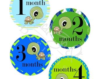 Milestone Stickers, Baby Month Stickers, Monthly Stickers, Monthly Baby Sticker, Baby Shower Gifts, Baby Month Sticker Boy, Turtles, B31