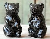 Ceramic Black Bear Salt and Pepper Shakers