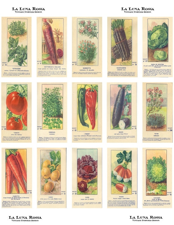 Vintage French Fruit and Vegetable Seed Packets - Ephemera ...