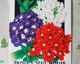 Vintage 1930s Verbena Seed Packet