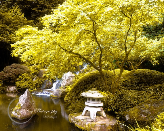 Landscape Glass Portland Oregon : Japanese garden portland oregon fine art photography print home