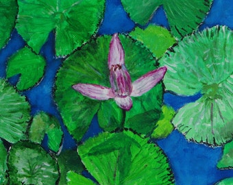 Water Lilies Flowers No.4