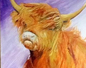 Scottish Highlander oil on canvas 60 x 60 cm