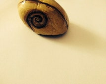 Hand painted garden rock snail. Acrylic on rock waterproofed for all weather