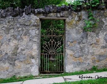 Beyond the Garden Gate Original Signed Photo Greeting Card (Blank inside)