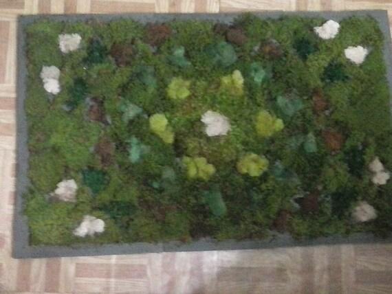 Moss bath rug roselawnlutheran for Moss shower mat