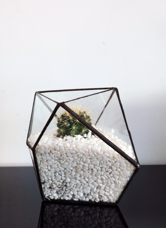 geometric glass terrarium triangle terrarium mordern glass. Black Bedroom Furniture Sets. Home Design Ideas