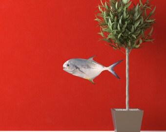 Permit Fish Sea Life Vinyl Decal - Trachinotus falcatus