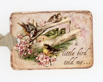 Bird Tags , Shabby Birds , A Little Bird Told Me , Cherry Blossoms , Bridal Shower , Wedding Favors , Wish Tree Tags