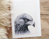 Eagle by Daniel