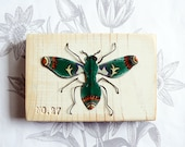 beautiful bug 27 - green flyer- vintage tin and wire wall art