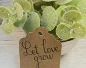 25 Small Let Love Grow  - Personalized Wedding Favor Tags