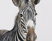 ORIGINAL painting watercolor painting original WATERCOLOR painting watercolor animal painting zebra painting art nursery art 8x10
