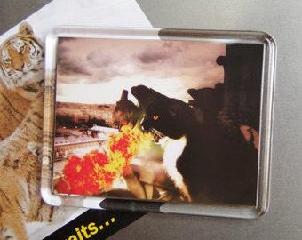 Fire Breathing Cat Magnet, Black Dragon Cat, Tuxedo Cat Art, Fridge Magnet
