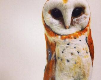 Azalea the Barn Owl