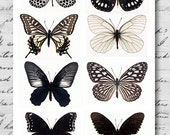 Butterfly BIG Black and White - A4 Digital Collage Sheet - For unlimited number of prints - Set1