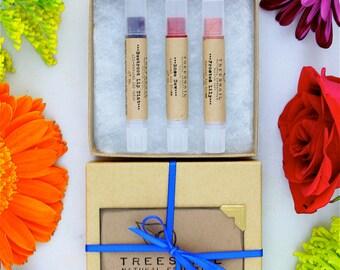 Set of 3 Natural Lip Gloss Set - Lip Tint - Natural Cosmetics - Gift Set Under 20 - Stocking Stuffer - Secret Santa - Lip Shimmer
