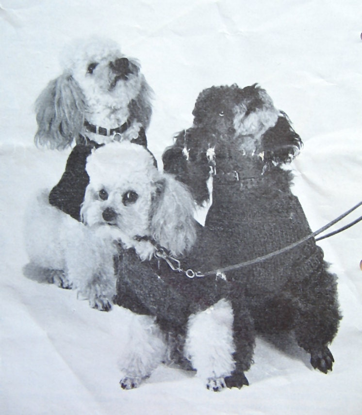 Knitting Coats For Dogs : Knitted coats for small dogs vintage knitting pattern dog