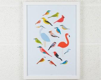 A3 Birds Print