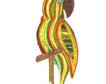 Parrot of Caribbean Original Tri-Color Pencil Drawing