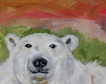 Polar B- a Bear