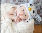 Crochet Fuzzy Blue Owl Hat (Newborn)