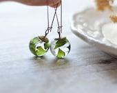 Fern earrings - terrarium jewelry, fern terrarium, wholesale, pressed leaves, nature jewelry, maidenhair fern, eco resin jewelry
