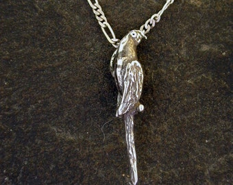 Sterling Silver Original Macaw Pendant on a Sterling Silver Chain