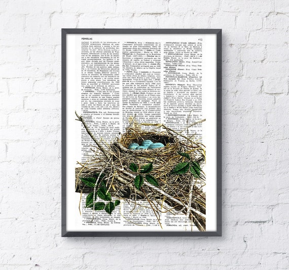Robin bird nest print on Book page-Nest and eggs Art- Print giclee- Poster Print  Art Wall Hanging poster-Wild nature dictionary BPAN046
