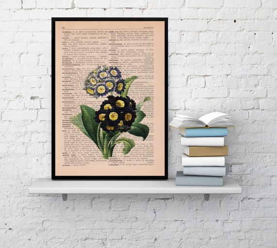 Spring Sale Wall art Vintage Botanical  Illustration English primrose Print on Vintage Book page- Home wall decor BPBB049