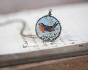 Robin Pendant - Bird Necklace - Glossy Resin Charm
