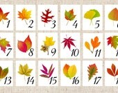 Autumn Leaf Table Numbers, Fall Leaf Table Tents, Autumn Wedding Table Cards, Thanksgiving Table Card, Autumn Fall Event, Harvest Table Card