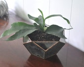 Calix Terrarium Kit, large half dodecahedron glass terrarium -- stained glass -- copper or silver color -- eco friendly