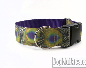 """Purple Peacock Feather Dog Collar // 1.5"""" (38mm) Wide // Wide Martingale or Quick Release // Choice of collar style and size //Golden Yellow"""