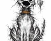 Cute puppy Print download Quite shabby scruffy pet pup with tatty fur and a sticky up ear Mucky doggie looking for attention