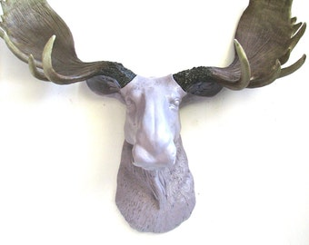 Faux Taxidermy Moose Head Wall Hanging Wall Mount Home Decor: Max the Moose in light purple-gray with natural-looking antlers