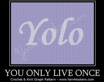 YoLo - You Only Live Once - Afghan Crochet Graph Pattern Chart - Instant Download