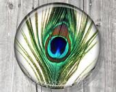 Peacock Feather Pocket Mirror - Peacock Compact Mirror - Peacock Feather Photo Image - Compact Mirror - Bridesmaid Gift A124