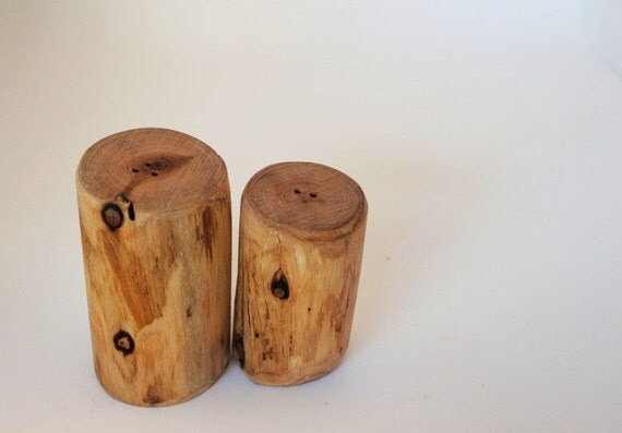 Kitchen Decor Salt And Pepper Shakers By Bessiescreations