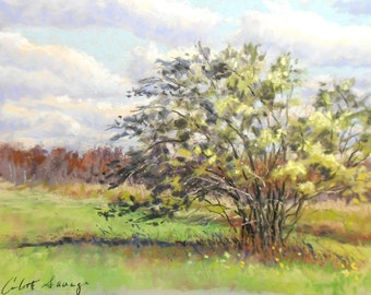"Original Pastel Landscape Painting - ""Windswept "" by Colette Savage, fall autumn, fine art, contemporary art, wall art, landscape, beautiful"