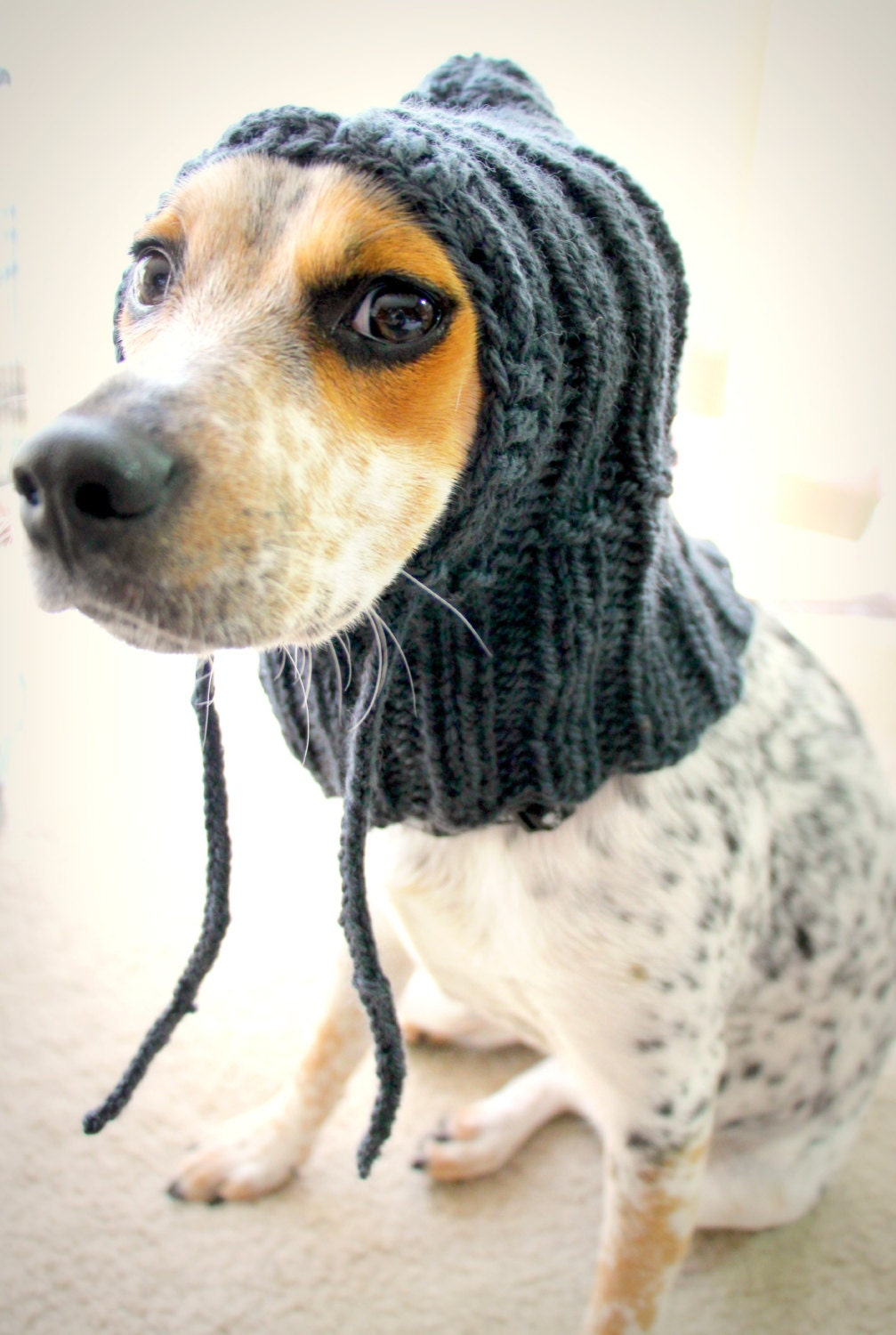 Knitting Pattern Hat Dog : Custom knit dog hat dog hoodie pet scarf pet clothes dog