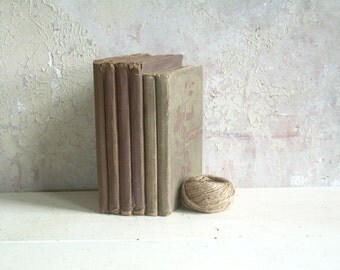 Antique Book Bundle Collection Shades of Brown 6 volumes 1800's