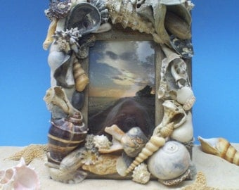 Seashell Frame, 10 1/2 X 7 1/2, Many Varigated shell colors, Seashell Art at its best