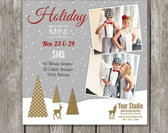 Holiday Mini Session Marketing Board - Christmas Mini Sessions - Mini Session Template for Photographers - Christmas Mini Flyer - MS14