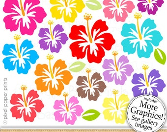 Hibiscus clipart - colorful hibiscus - Clip art - commercial use