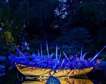Denver Botanic Garden Photograph Study 3 - Blue Boat of Stars: Traditional Landscape Color Photograph Print