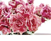 pink flowers photography, dried roses photograph, flower wall art, botanical decor