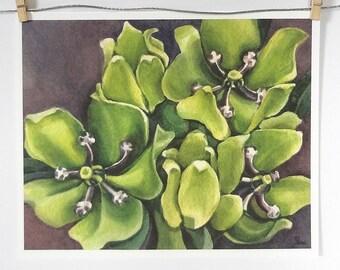 green flowers watercolor art print, botanical wall art, green and purple nature decor